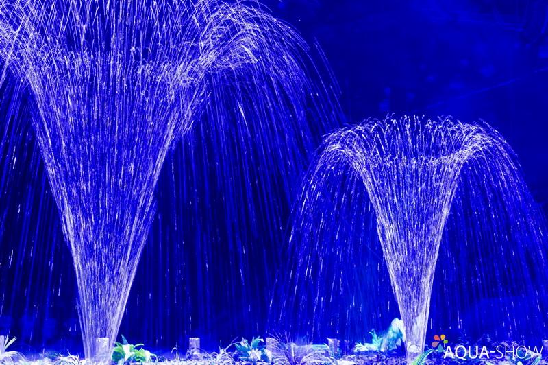 фонтанное шоу